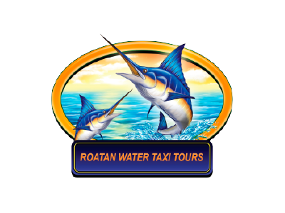 water-taxi-tours